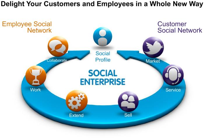 Hesam_Seyed_Mousavi_Salesforce-Social-Enterprise 2