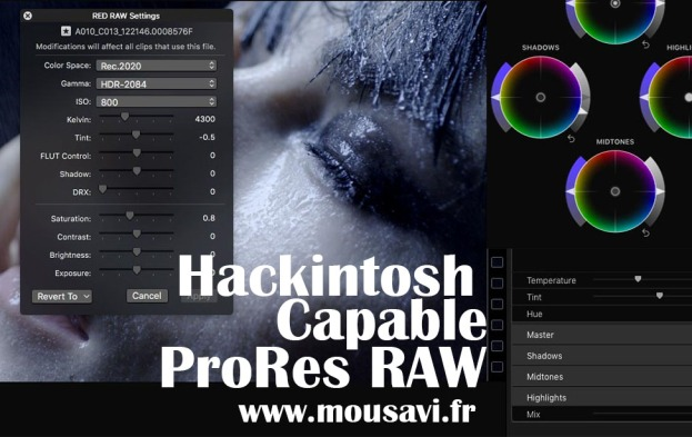 Hesam Seyed Mousavi Hackintosh ProRes Raw